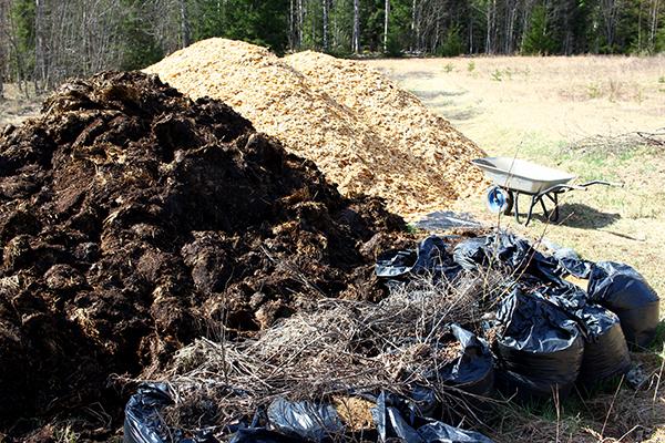 Träflis, koskit och spån - rena guldet för skogsträdgårdsodlaren.