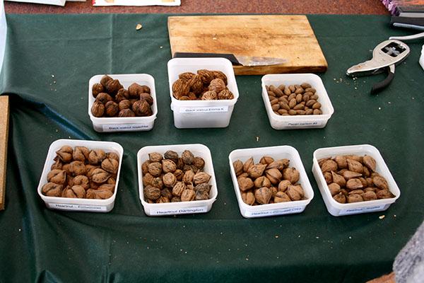 Tyvärr är det ont om tillförlitlig näringsinformation för de ovanligare nötterna, som hjärtnötterna och pekannötterna på den här bilden.