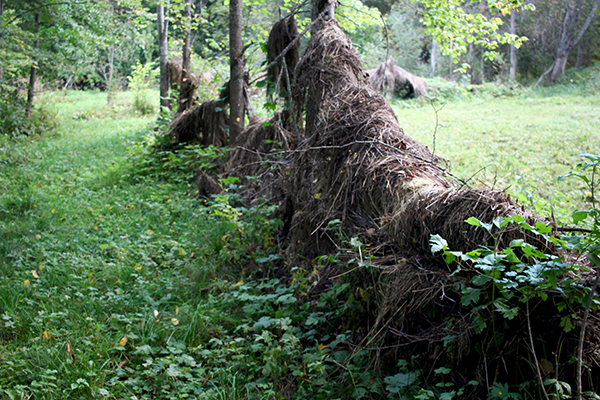 Hägn av grenar och hö skapar rum i Oves trädgård och gör att han aldrig behöver flytta höet mer än några meter.