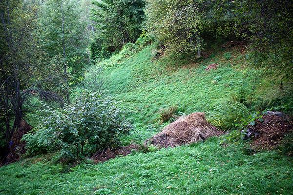 Ove immer Rechen das Heu bis zu den Pisten, um die Bodenfruchtbarkeit zu erhöhen.