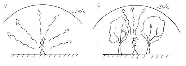 Utan skydd är vi exponerade mot hela natthimlen och förlorar värme i en radie på som mest 180° (a). Skyddar vi oss istället med hjälp av exempelvis skärmträd (b) minskar utstrålningen avsevärt, eftersom vi är exponerade mot natthimlen endast i en liten vinkel. På så vis minska frostrisken sent på våren och tidigt på hösten när frosten är som mest skadlig.