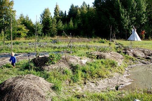Flera typer av upphöjda odlingsplatser i skogsträdgården.
