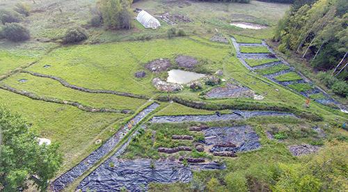 Besökaren till Puttmyra skogsträdgård möts av stora arealer som är täckta med plast.