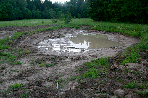 The newly dug pond filled rapidly and has been an invaluable resource during the long summer drought.