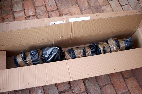 Valnötter, härdig ingefära och annat spännande finns i det här paketet från Agroforestry Research Trust i England