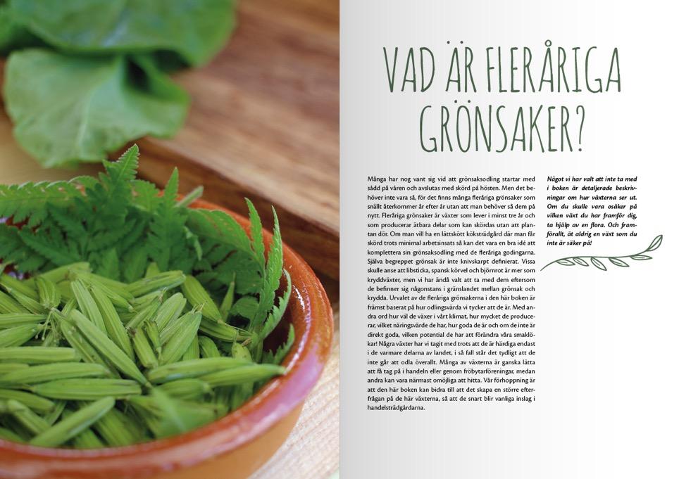 I boken kommer det att finnas en hel del generell bakgrundsinformation om fleråriga grönsaker med råd om hur de odlas i svenskt klimat.